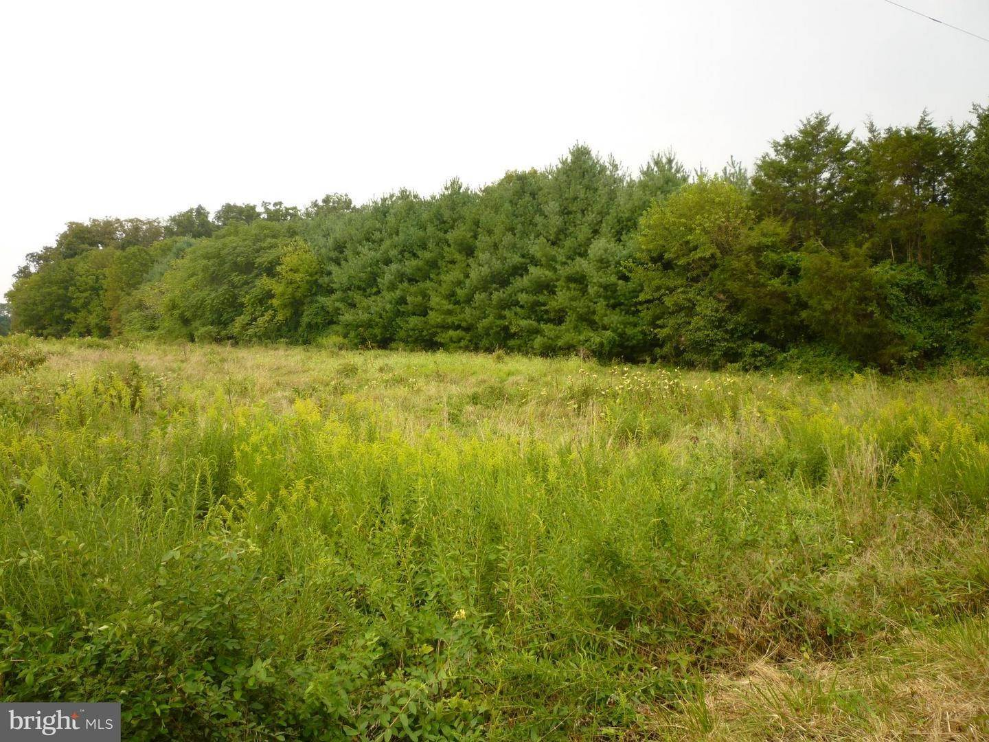 Land for Sale at Catlett, Virginia 20119 United States