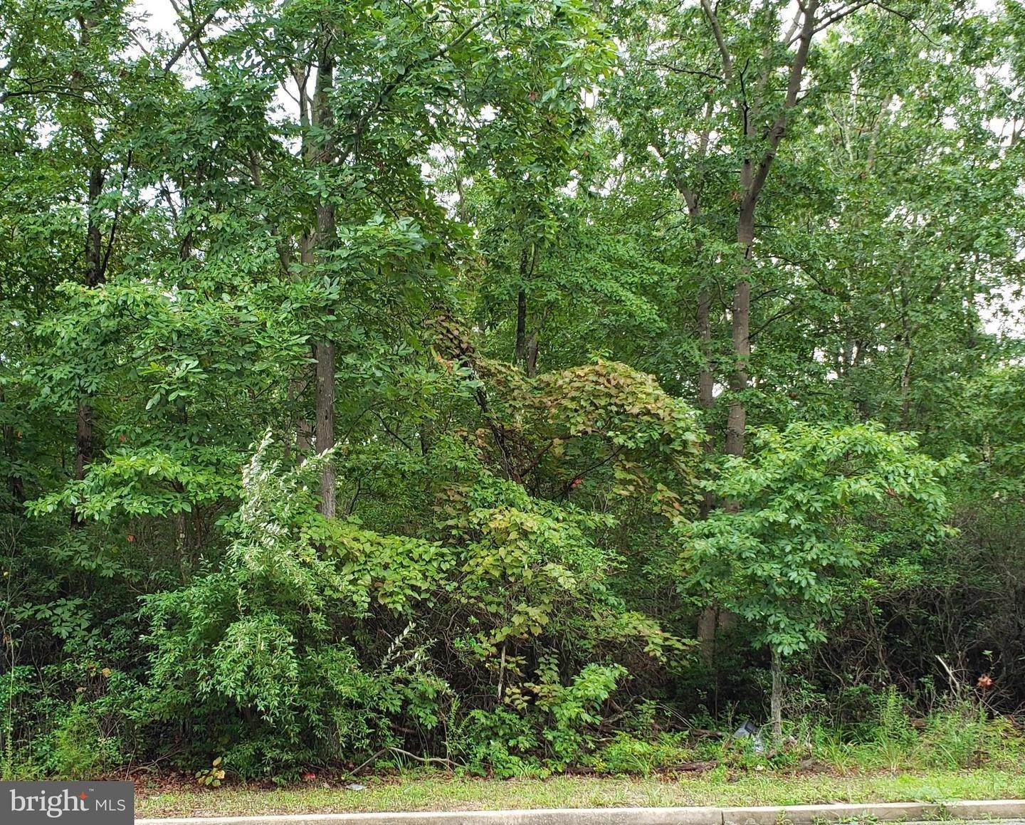Land for Sale at Cedarville, New Jersey 08311 United States