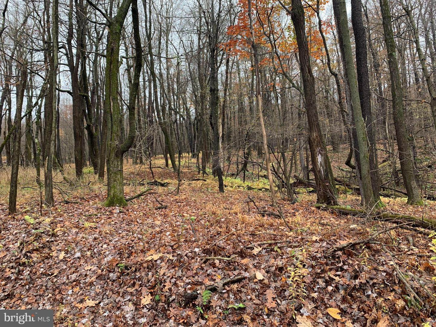 Land for Sale at Central City, Pennsylvania 15926 United States