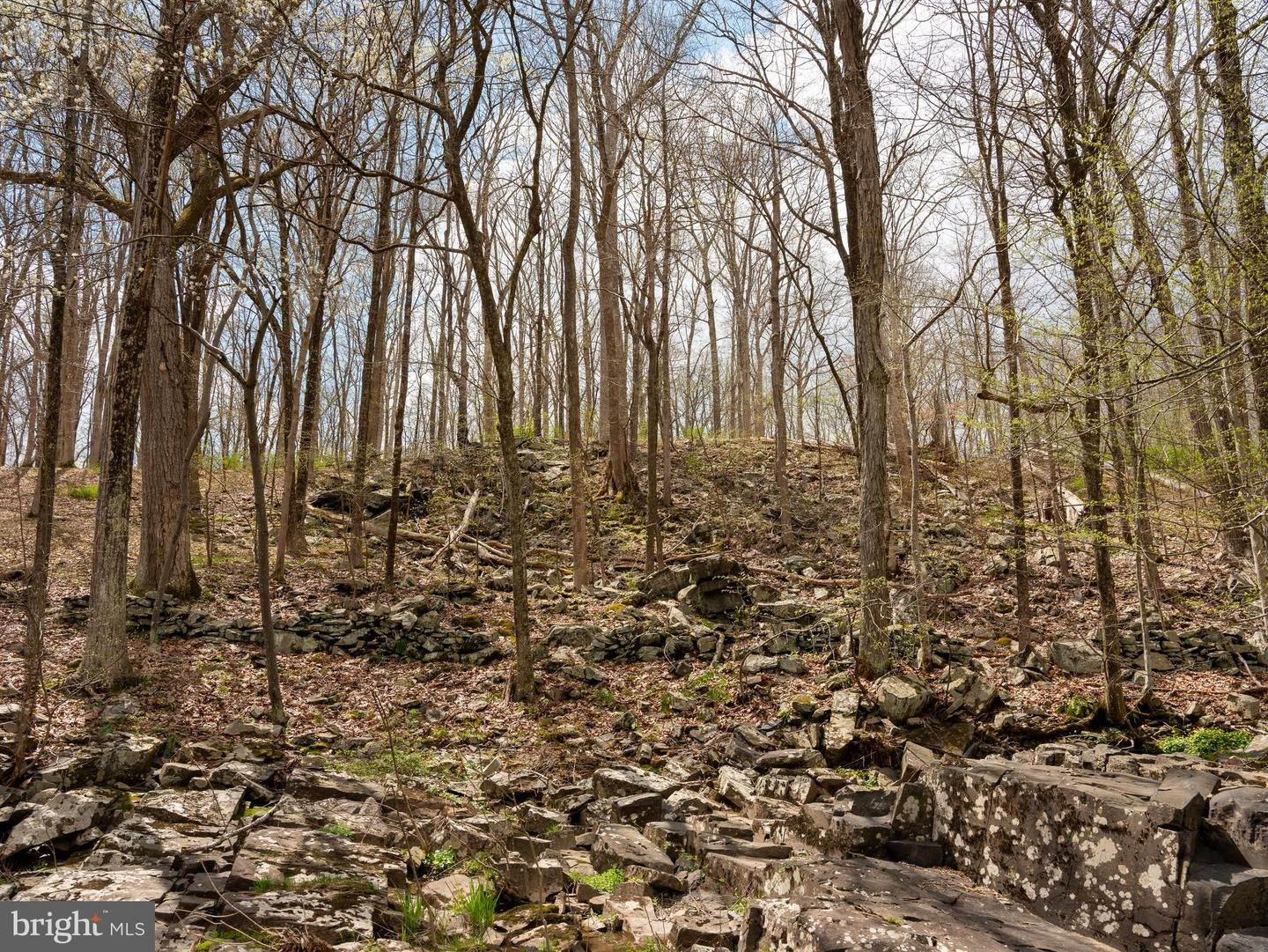 19. Land for Sale at Frenchtown, New Jersey 08825 United States