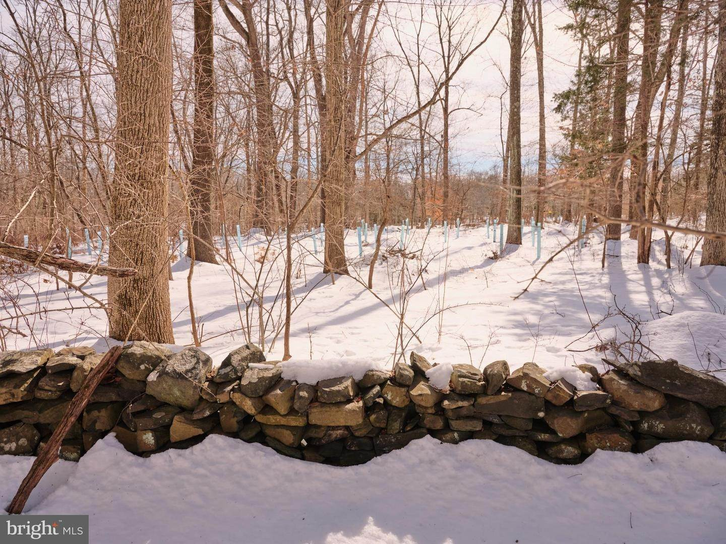 22. Land for Sale at Frenchtown, New Jersey 08825 United States