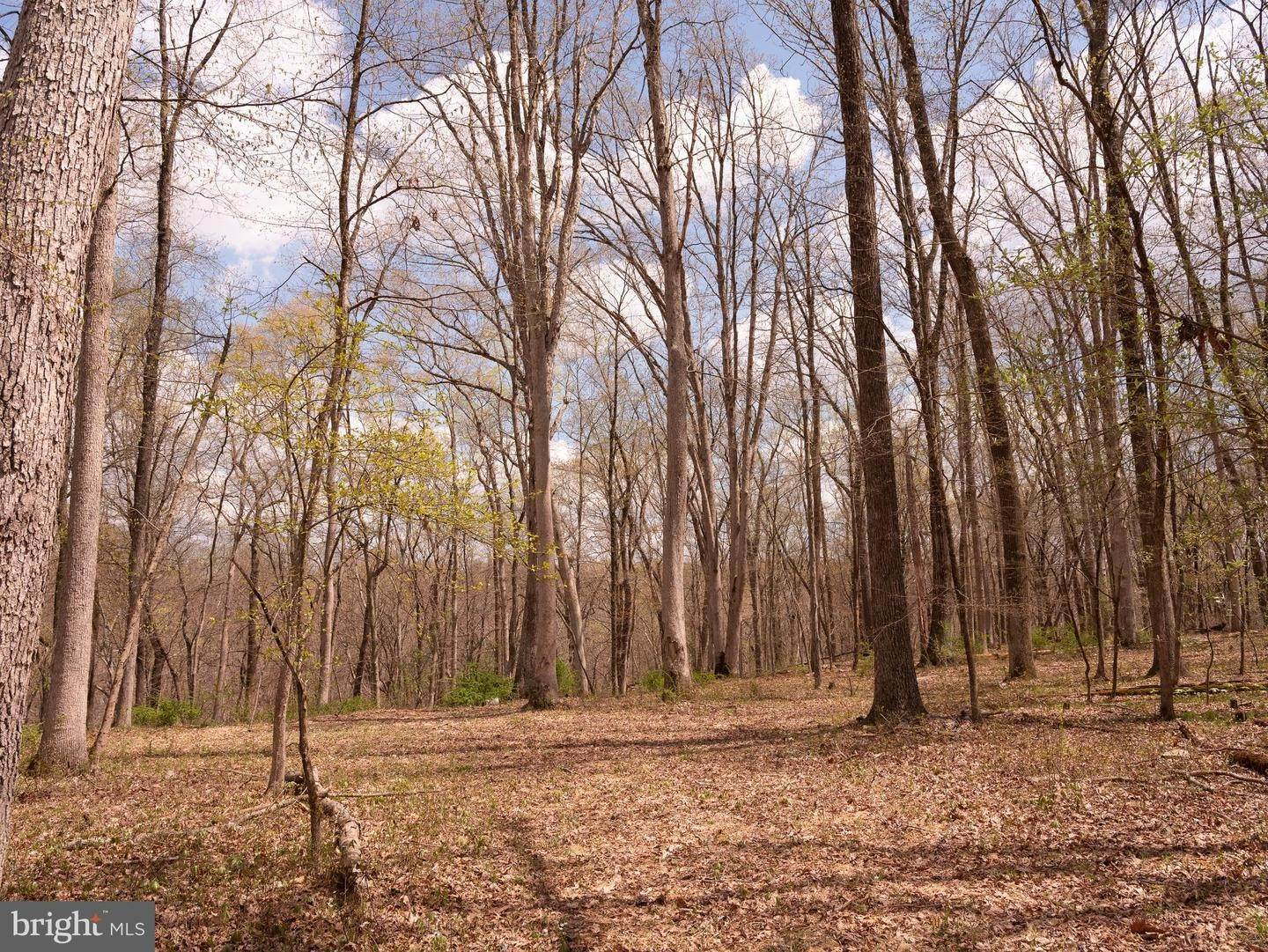 20. Land for Sale at Frenchtown, New Jersey 08825 United States