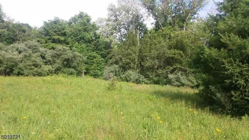 4. Land for Sale at Hopewell, New Jersey 08530 United States