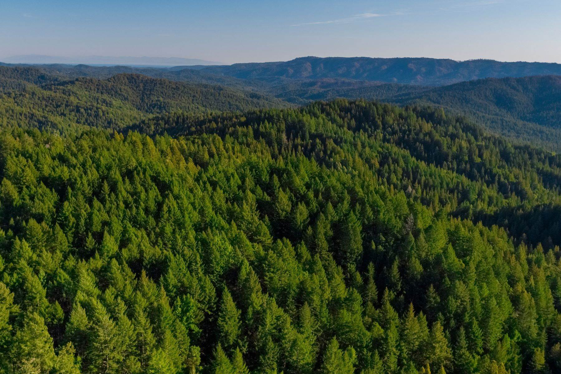 Property للـ Sale في Prime Santa Cruz Mountains Acreage 24021 Highway 9, Los Gatos, California 95033 United States