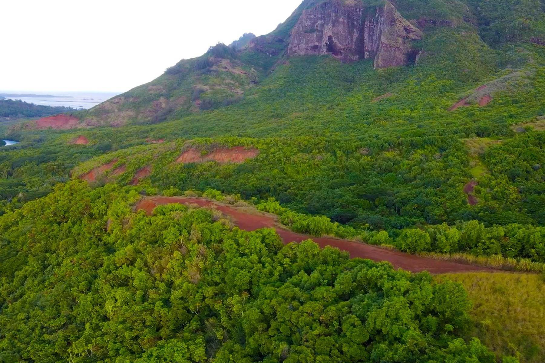 15. Land for Sale at The Headlands of Kalanipu'u Niumalu, Lihue, Hawaii 96766 United States