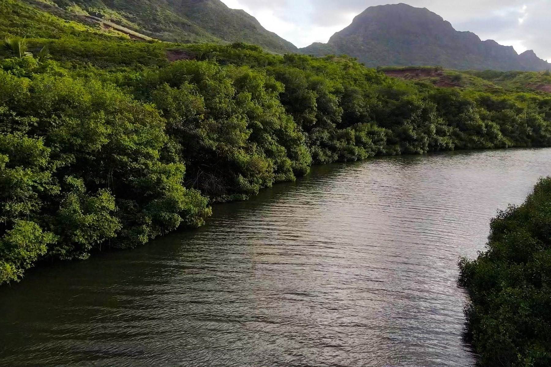 14. Land for Sale at The Headlands of Kalanipu'u Niumalu, Lihue, Hawaii 96766 United States